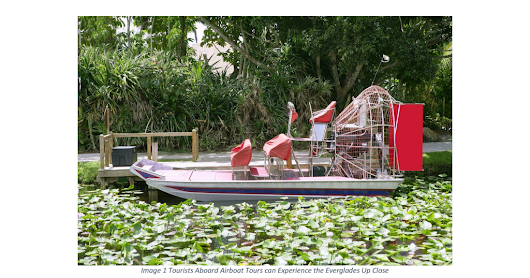 Mangroves and Alligators Attract Tourists to Airboat Tours in Everglades City - Google Drive