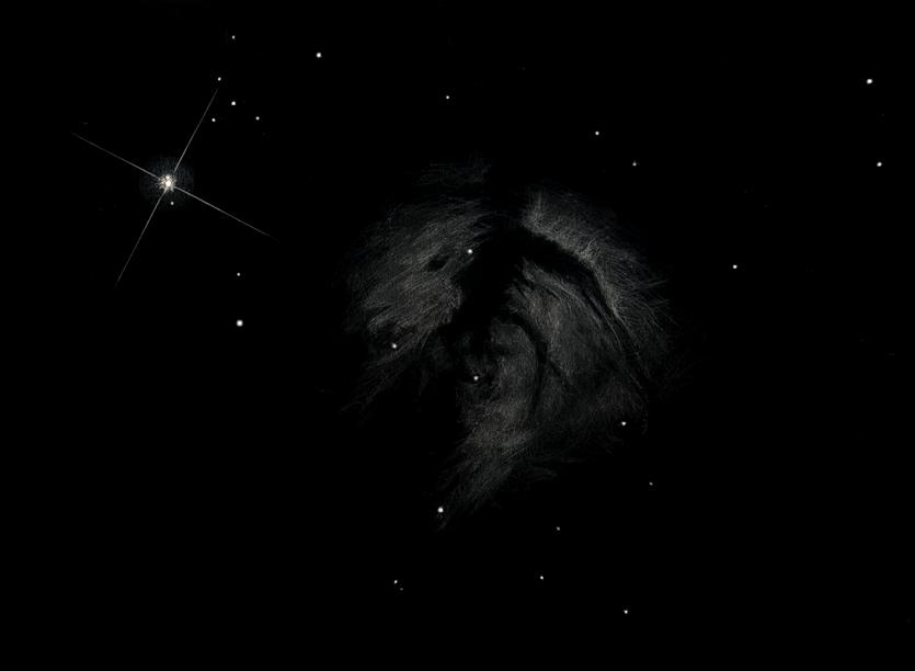 """Photo: NGC 2024 dans Orion (nébuleuse de la flamme), le 26 février 2011 au T406 depuis ma commune. Ciel très transparent. Gr 88X et 195X, pas de filtre. Alnitak (avec les aigrettes) est double, sa compagne (à 2,4"""" d'arc) est juste au-dessus."""