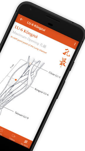 A Manual of Acupuncture screenshot 3