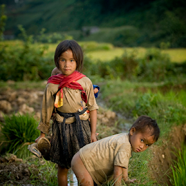 Hard lifes by Dan Pham - Babies & Children Children Candids ( ricefield, travel, kids )