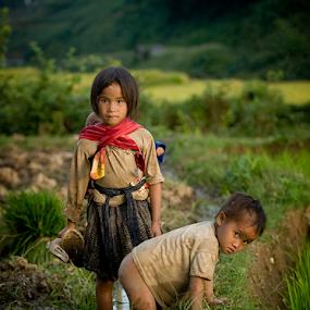 Hard lifes by Dan Pham - Babies & Children Children Candids ( ricefield, travel, kids )