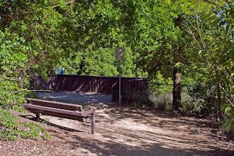 Photo: West Area Pond - Arlington Blvd Area