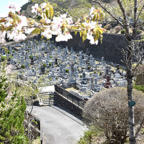 メモリアルアートの大野屋が春彼岸のお墓参りの疑問に答える