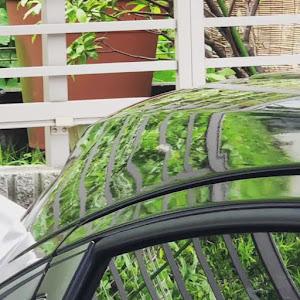 ヴェゼル RU3 ハイブリッド RSのカスタム事例画像 堀直己さんの2019年05月29日09:54の投稿
