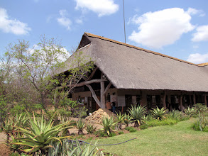 Photo: Kruger NP - Skukuza restcamp