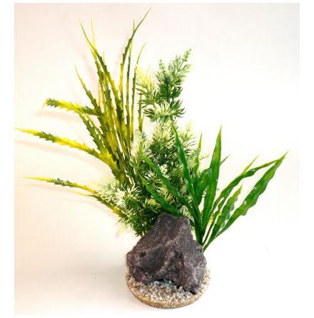 Aquaplant Rock XL 30cm