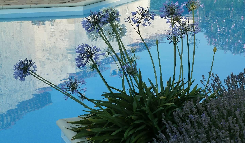 Propriété avec piscine et jardin Albi