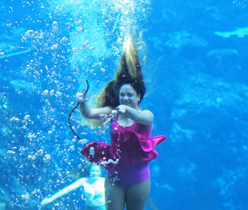 Go see the mermaids at Weeki Wachee!
