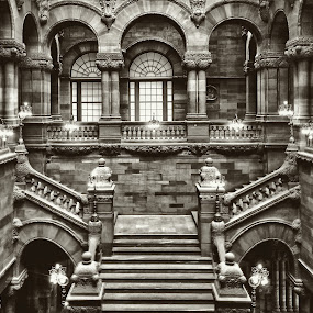 Capitol 322 by Kevin Lucas - Buildings & Architecture Other Interior ( limestone, gothic revival, black and white, carvings, stone, architecture, new york, capitol,  )