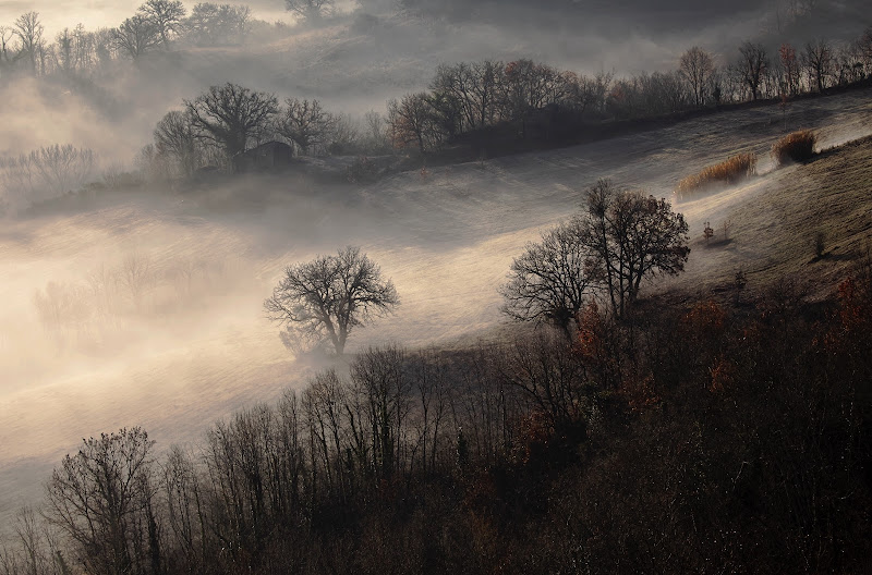 Nebbia e colori... di stefanogaleotti