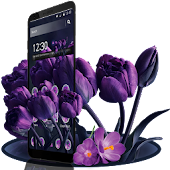 Purple Tulip Flower Theme