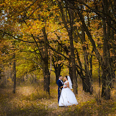 Wedding photographer Roman Savchenko (Rsavchenko). Photo of 25.02.2015