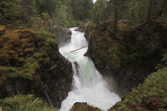 Photo: Little Qualicum Falls