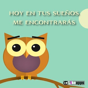 Best Imagenes De Amor De Buhos Con Frases Cortas Image Collection