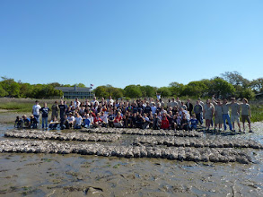 Photo: 2011 volunteers with reefs