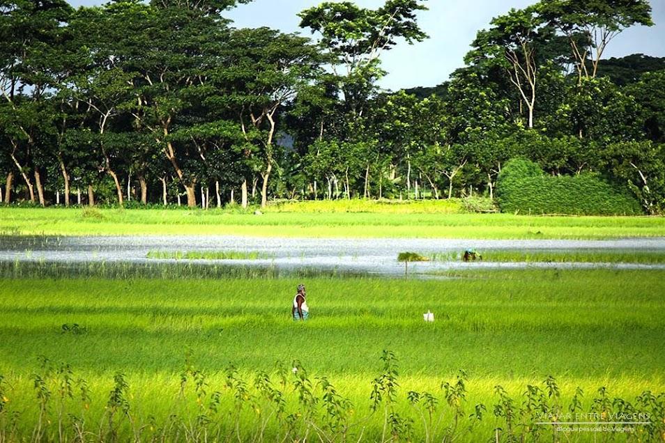 VIAJAR NO BANGLADESH | Visto, clima, segurança, transportes, alojamento e lugares a visitar