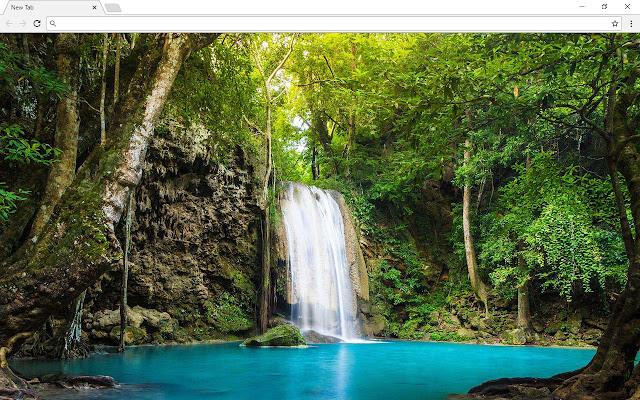 Forest And Jungle New Tab Page
