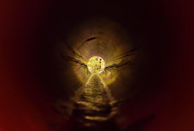 Nel tubo di fuche