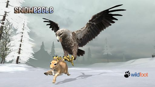 Snow Eagle 3D Sim