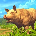 Pig Strike Simulator 2020: New Games 2020 icon