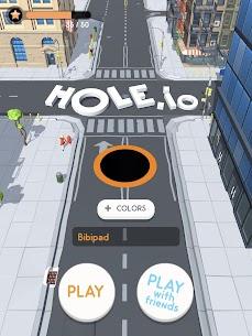 Hole.io 10