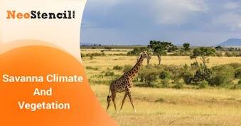 Savanna Climate And Vegetation