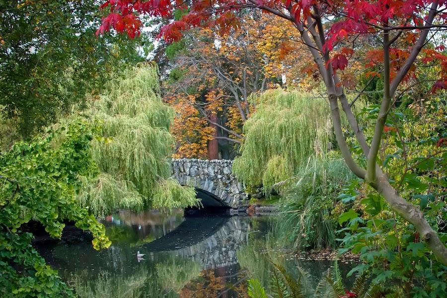The park in autumn by Keith Boone - City,  Street & Park  City Parks ( autumn, parks, bridge, landscape )