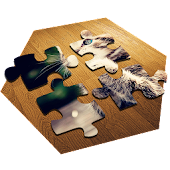 Jigsaw Puzzles: Solve The Puzzle!