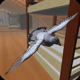 Roofy Bird