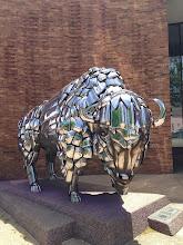 Photo: Grand Junction Buffalo