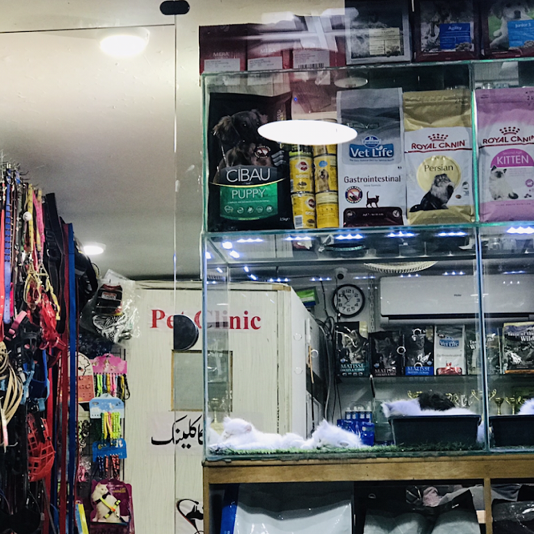 Pets point - Pet Store in Lahore
