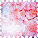 Spring flowers Live WP icon