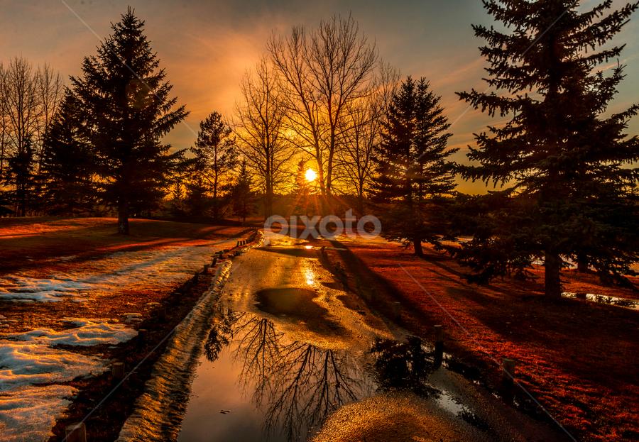 Edmonton City Park by Joseph Law - City,  Street & Park  City Parks ( melting, snow, trees, reflections, golf, sunshine, walkway, edmonton, city park,  )