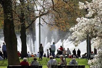 """Photo: A water display to music in Hamburg's """"Planten un Blomen"""".park."""