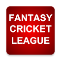 Fantasy Cricket League Tips icon