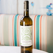 Domino de Punctum, Viognier White Wine