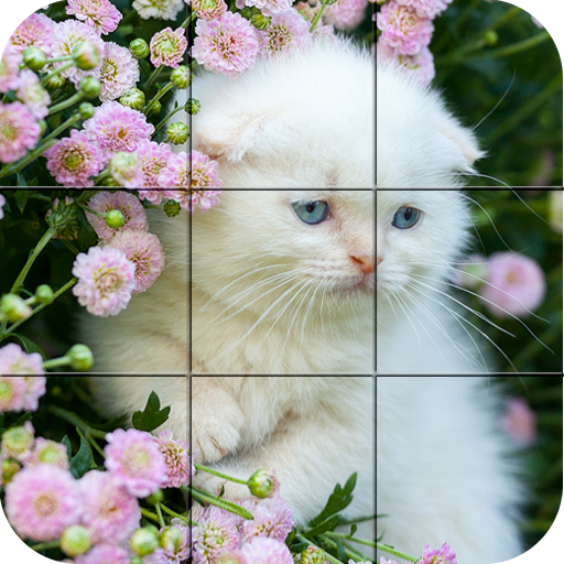 Puzzle - kittens file APK Free for PC, smart TV Download