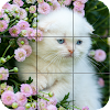 chatons - Puzzle