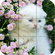 Puzzle - kittens
