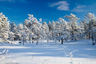 Photo: Sunny winter day in Herstadhei, Røyken