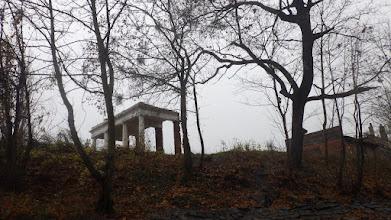 Photo: grecko (?) nad Widawą