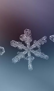 Winter Snowflakes Wallpaper - náhled