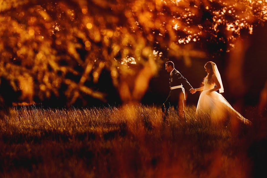 Wedding photographer Adam Johnson (arjphotography). Photo of 04.08.2016