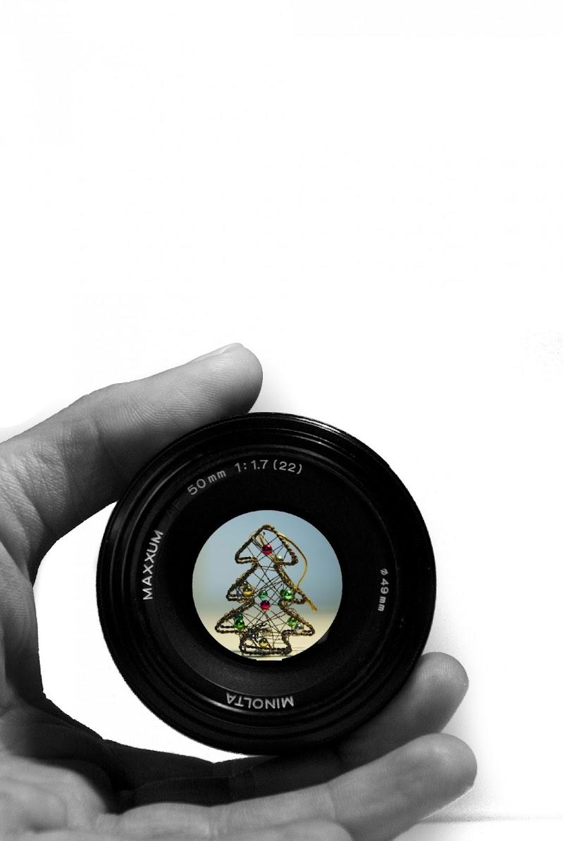 """Fotografando """"L' albero di  Natale"""" di Simone Fedeli"""