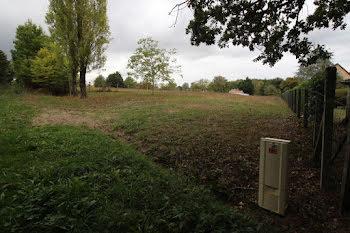terrain à Saint-Sauveur (86)