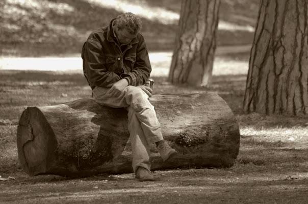 La vita solitaria..... di laura70