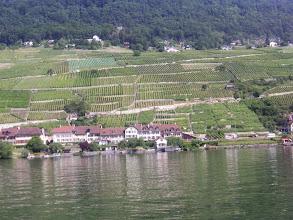 Photo: Schönes Weingebiet