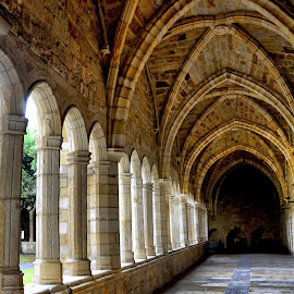 The Cloister by Francis Xavier Camilleri - Buildings & Architecture Architectural Detail