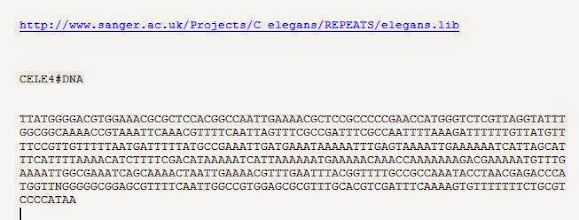 Photo: T/U = 00,    C = 01,    A = 10,    G = 11.  This is a DNA repetitive sequence of CELE#4 found in C elegans.C elegans is a roundworm genomic scientists study in the laboratory because they can watch every one of its 959 cells develop.  Why does C elegans need repetitive sequences? More to the point...why are repetitive sequences 8% of the human genome? Is a repetitive sequence to a genome what a rest is to music?  Given: every RNA codon that codes for an amino acid belongs to one of the amino acid groups;  and any RNA codon that codes for a specific amino acid in one amino acid group can share the same attraction repulsion pattern as another RNA codon that belongs to a different amino acid group;  then,  does that suggest that a repetitive sequence may provide a similar type of invariance that RNA codon UUU provides during transcription, or provides a constant pattern on a larger scale similar to the white and black palindrome patterned Hox codons provide?