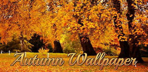 Autumn Wallpaper Apps On Google Play